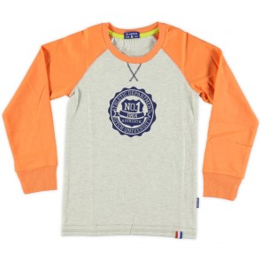 Boys Raglan T-Shirt in Grey Melange