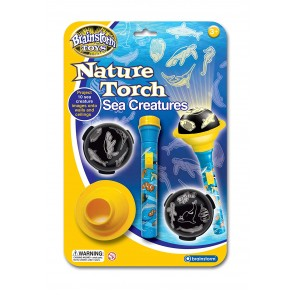 Sea Creatures Nature Torch