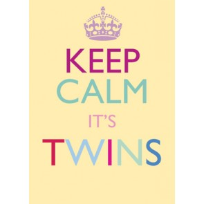 Keep Calm It's Twins Card