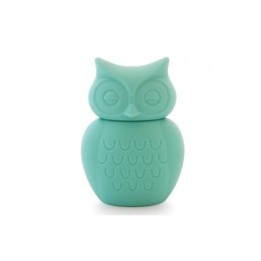 Owl Money Box in Aqua