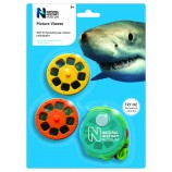 Sea Creatures Picture Viewer